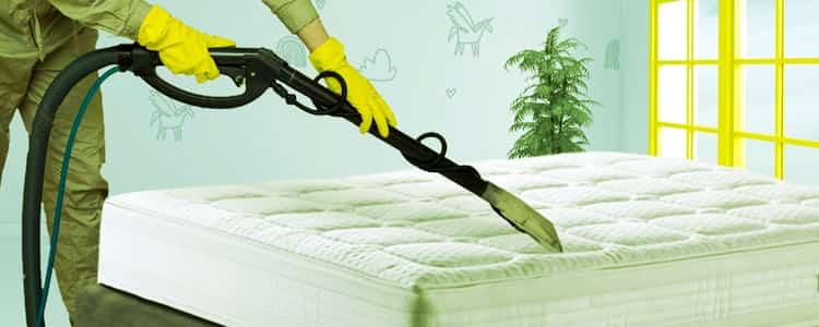 Expert Mattress Cleaning Lenah Valley